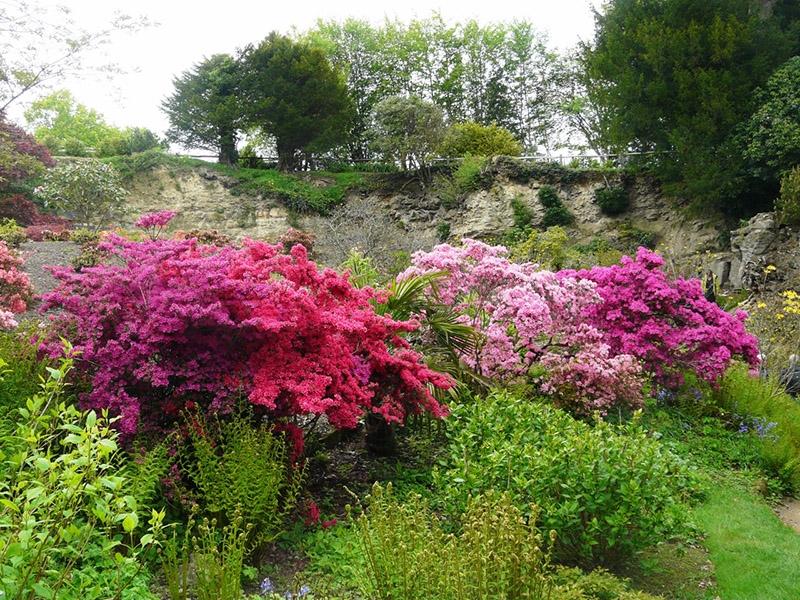 jardins-chateaux-sussex-uk-philippe-2012-05-46-1280x960